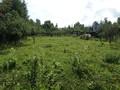 Land in Town for Sale in Telega (Prahova, Romania), 12.000 €
