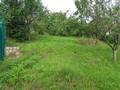 Land in Town for Sale in Telega (Prahova, Romania), 7.500 €