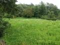 Land in Town for Sale in Provita (Prahova, Romania), 14.500 €