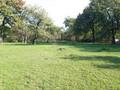 Land in Town for Sale in Banesti (Prahova, Romania), 125.000 €